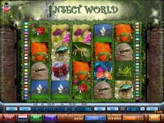 insect world - Insect World